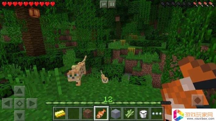 我的世界(Android Minecraft)已解锁